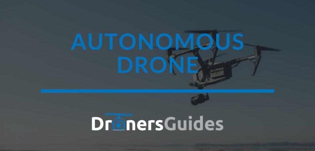 autonomous drone reviews